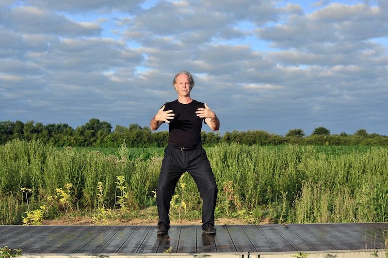 Tai chi - devenir qui je suis -Posture de l'arbre - Eric Caulier