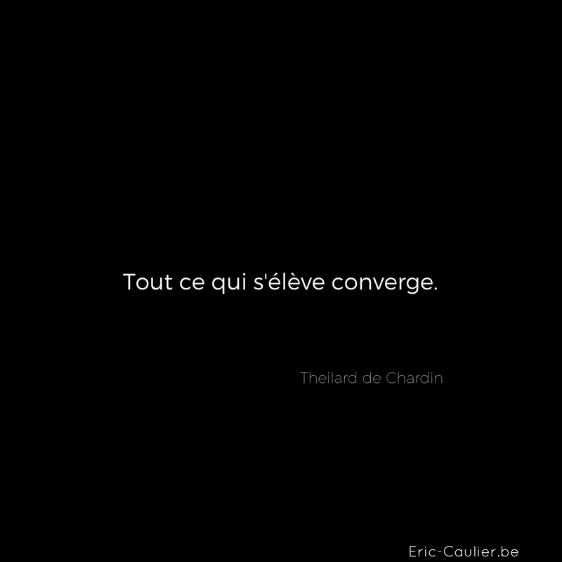 Citation de Theilard de Chardin