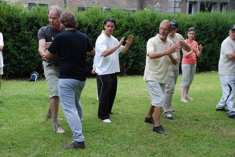 Tai chi chuan : entre clans et institutions